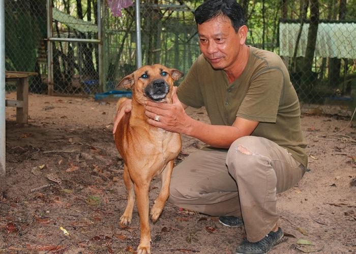 Visiting Phu Quoc Ridgeback Dog Farm - learn the origin
