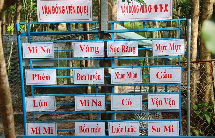 Visiting Phu Quoc Dog Farm - Old Thanh Nga Dog Farm
