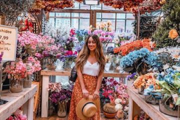 Dạo chợ hoa Bloemenmarkt Hà Lan chiêm ngưỡng hàng trăm loài hoa rực rỡ