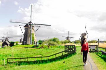 Gọi tên những địa điểm du lịch ở Rotterdam đẹp và nổi tiếng