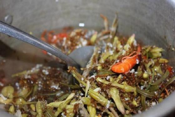 Canh chua kiến vàng Đắk Nông - đặc sản 'ngon vô đối' của người Ê Đê