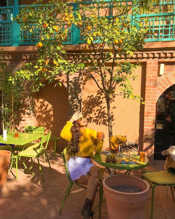 uống trà - hoạt động hấp dẫn tại Vườn Majorelle