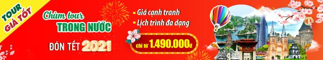 Banner Tour Tết