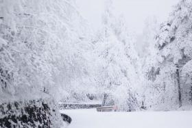 Kinh nghiệm đi tour du lịch Thành Đô - Lạc Sơn - Núi Nga Mi ngắm tuyết trắng phủ ngợp trời