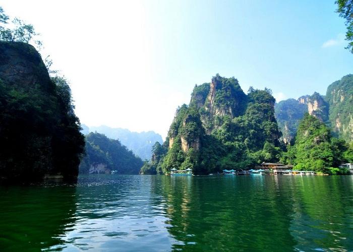 Hồ Bảo Phong, Trương Gia Giới
