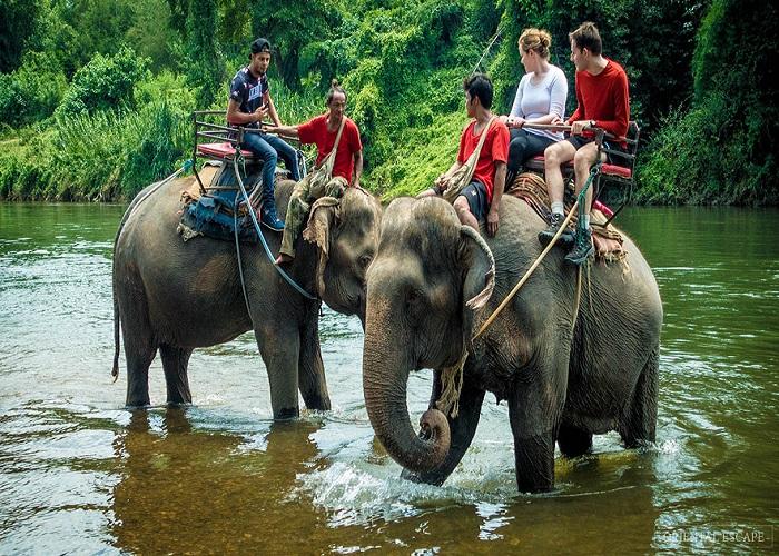 Trải nghiệm cưỡi voi ở Pattaya