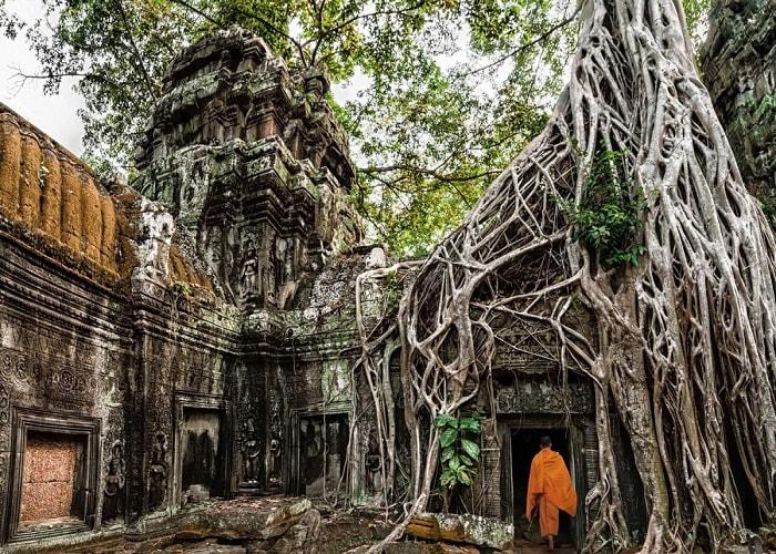 Ta Prohm Siem Riep