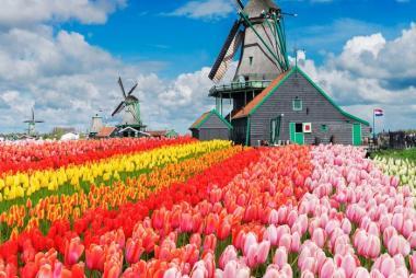 Hà Nội - Pháp - Luxembourg - Đức - Bỉ - Hà Lan 9N Lễ Hội Hoa Keukenhof