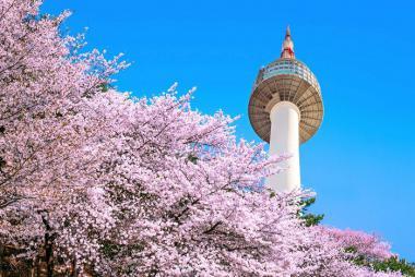 HCM - Seoul - Nami - Eveland 5N4Đ Bay Vietjet