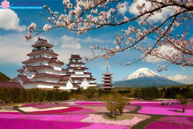HCM - Tokyo - Yamanashi - Fuji 4N3Đ + Bay All Nippon Airways