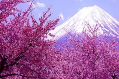Hà Nội - Tokyo - Núi Phú Sĩ - Nagoya - Kyoto - Osaka 6N Bay ANA