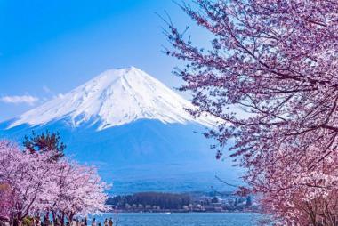 Hà Nội - Tokyo - Phú Sĩ 4 Ngày Bay Vietnam Airlines