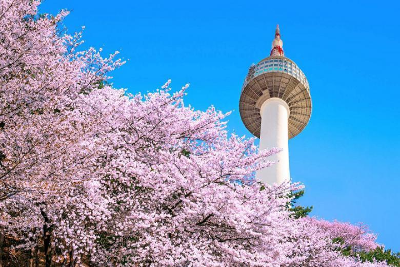 Hà Nội - Seoul - Nami - Everland 5N Bay TW
