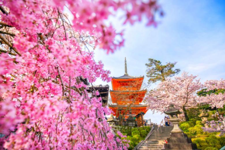 HCM - Kyoto - Kobe - Nagoya - Yamanashi - Tokyo 6N5Đ + Bay Vietnam Airlines