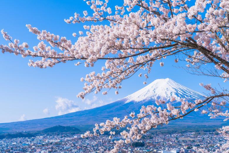 HCM - Tokyo - Yamanashi - Fuji 5N4Đ + Bay All Nippon Airways