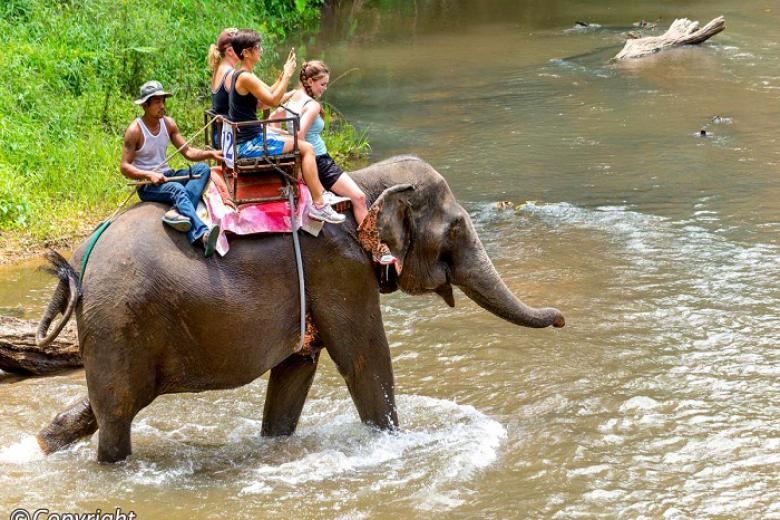 Đà Lạt - HCM - Chiang Mai - Chiang Rai 4N3Đ Bay Vietjet