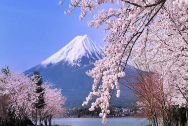Cần Thơ - Kyoto - Osaka - Kobe - Nagoya - Yamanashi - Tokyo 6N