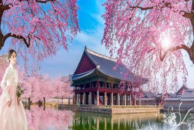 HCM - Seoul - Nami - Eveland 5 Ngày Bay VJ, Khách Sạn 5*