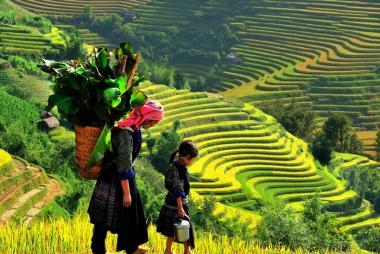 Cần Thơ - Hà Nội - Ninh Bình - Hạ Long - Yên Tử - Sa Pa 6N5Đ