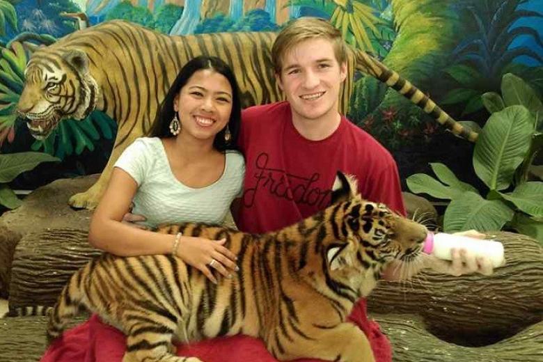 Trại Hổ Tiger Zoo