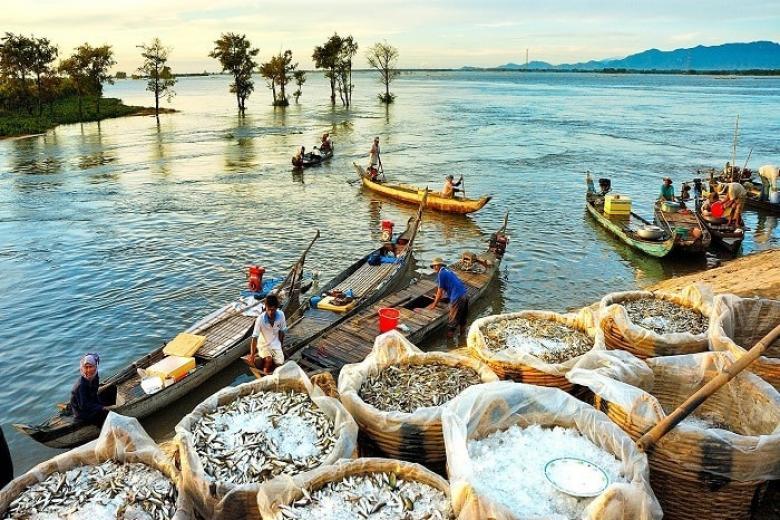Hà Nội - Cần Thơ - Sóc Trăng - Bạc Liêu - Cà Mau - Châu Đốc 4N3Đ