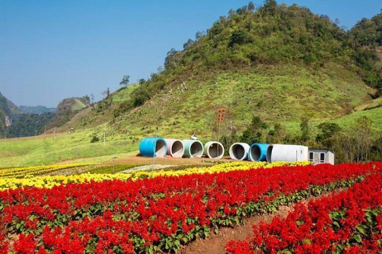 vườn hoa happy land