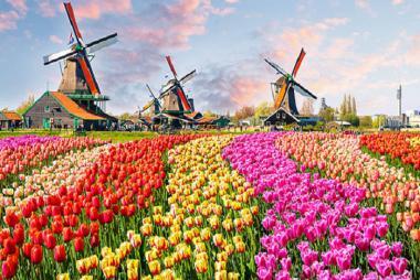 HCM - Pháp - Đức - Hà Lan - Bỉ 8 Ngày + Lễ Hội Hoa Tulip Keukenhof
