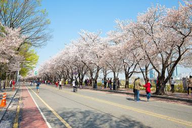 HCM - Seoul - Nami - Eveland 5N Bay VJ