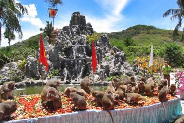 Tour Đảo Khỉ - Đảo Hoa Lan - Vịnh Nha Phu 1 Ngày