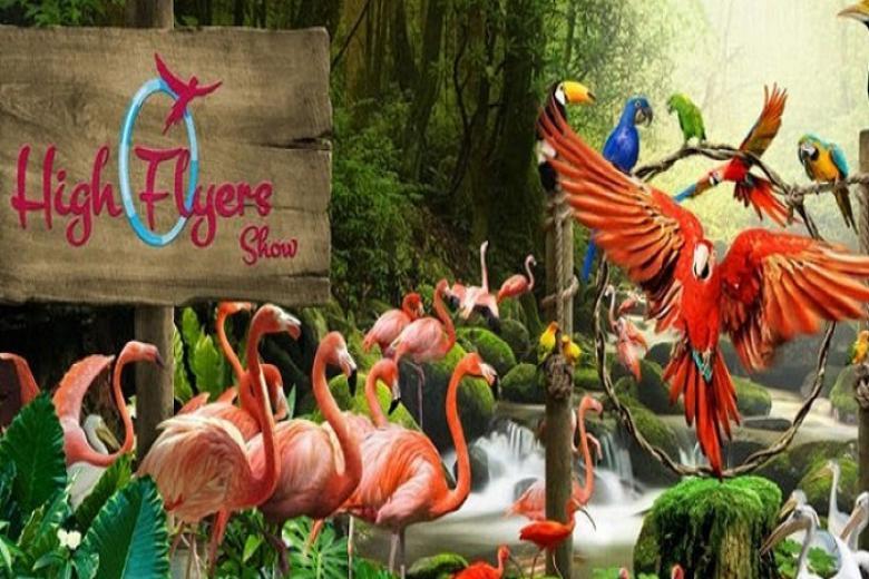 Đà Lạt - HCM - Singapore - Jurong Bird 3N2Đ