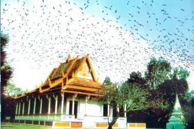 HCM - Mỹ Tho - Bến Tre - Cần Thơ - Sóc Trăng - Bạc Liêu - Cha Diệp - Chùa Bà - Cà Mau 4N3Đ
