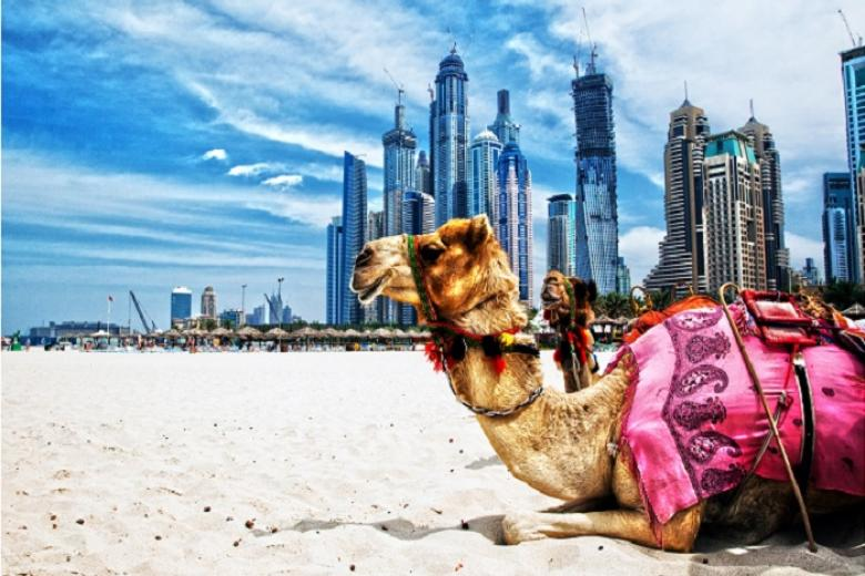 HCM - Brunei - Dubai - Abu Dhabi 6N Bay BI