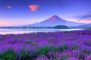 Quảng Ninh - Hà Nội - Osaka - Nara - Kyoto - Núi Phú Sỹ - Kawaguchi - Tokyo 6N Bay Vietnam Airlines