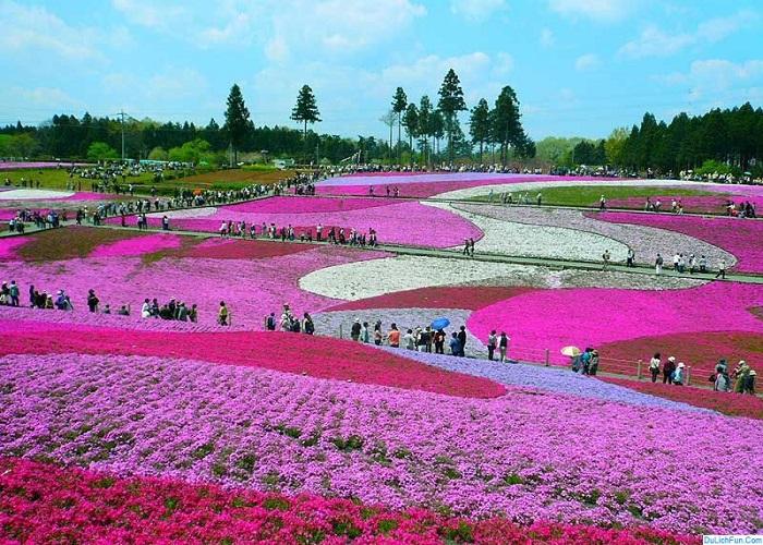 Công viên Hitachi