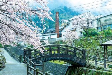 Cần Thơ - Tokyo - Owakudani - Yamanashi - Fuji 5N4Đ Bay ANA