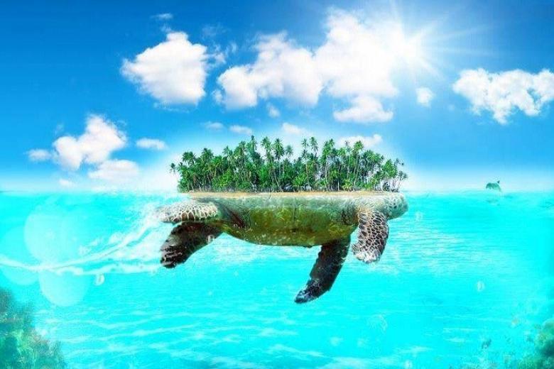 Đảo Rùa
