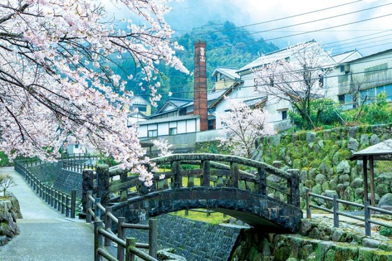 Cần Thơ - Tokyo - Yamanashi - Fuji 5N4Đ + Bay All Nippon Airways