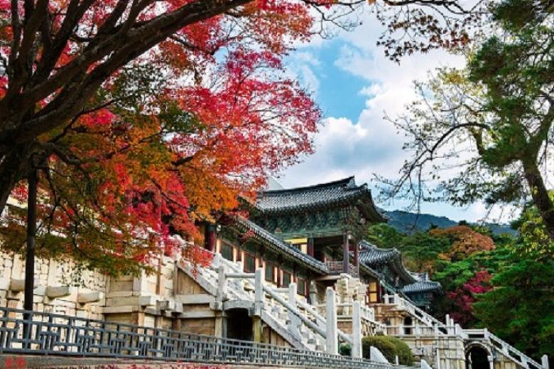 Hà Nội - Busan - Gyeongju - Daegu 5N Bay TW