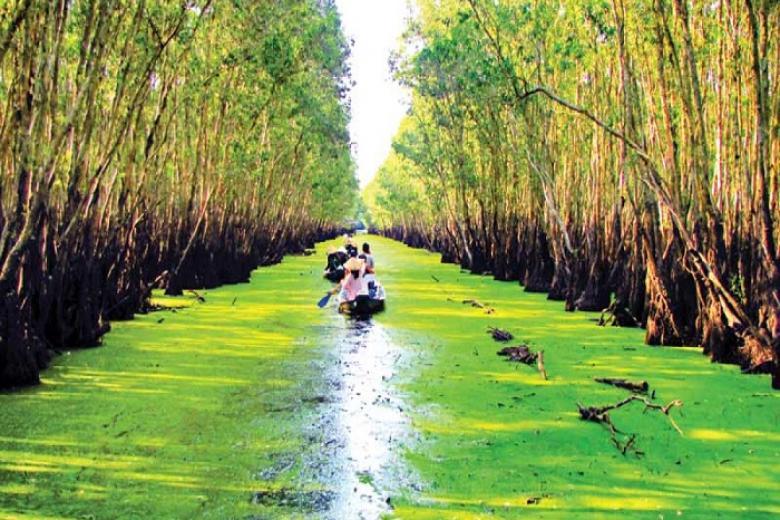 HCM - Châu Đốc - Rừng Tràm Trà Sư - Cần Thơ - Chợ Nổi Cái Răng 2N2Đ