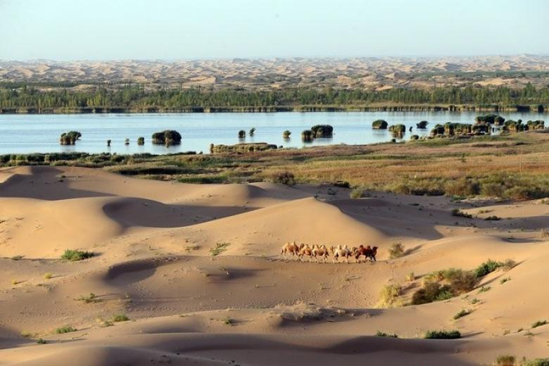 Sa mạc Kubuqi