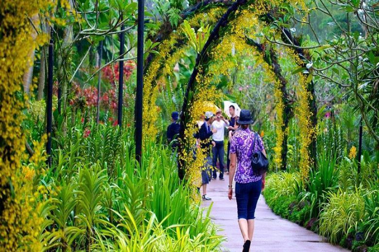 Vườn bách thảo Singapore Botanic Gardens