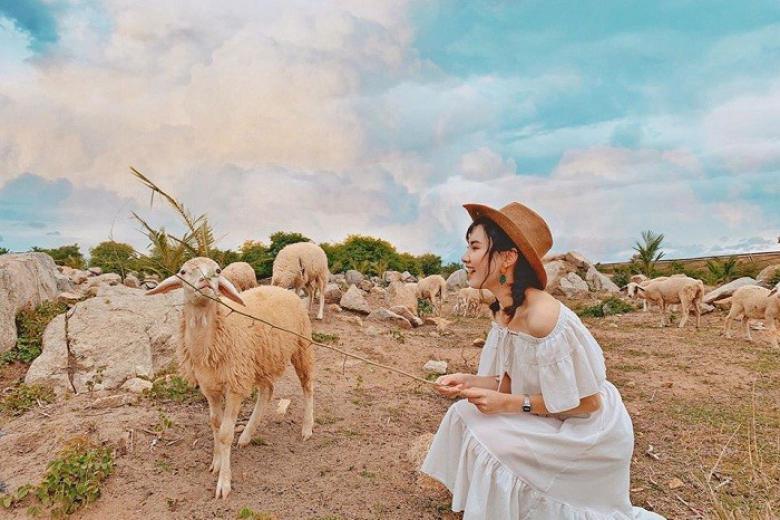 Đồng cừu An Hoà