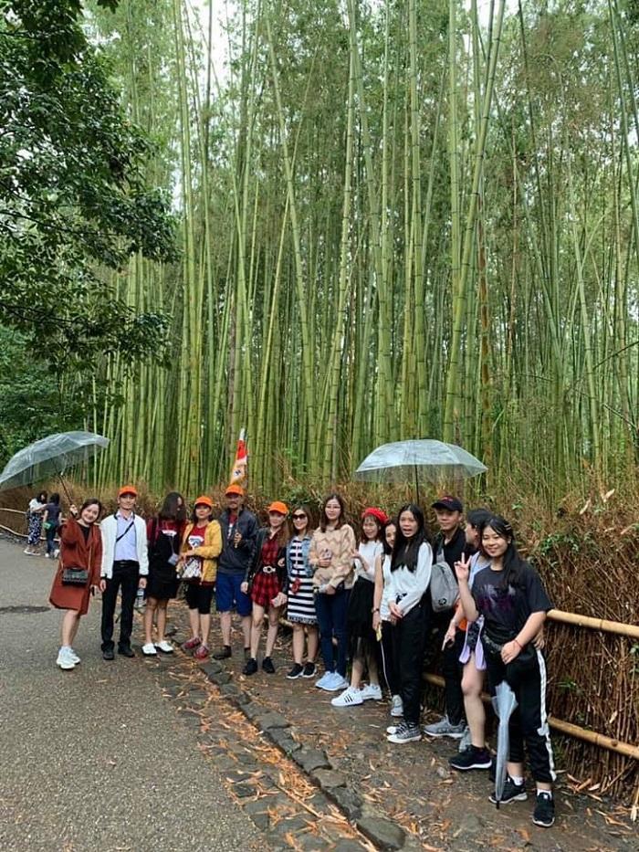 Đoàn khách thăm quan Rừng tre Sagano