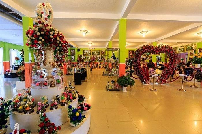 Du lịch Nha Trang:Showroom hoa khô nghệ thuật