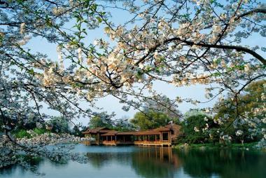 Hà Nội - Thượng Hải - Hàng Châu - Ô Trấn 5N4Đ