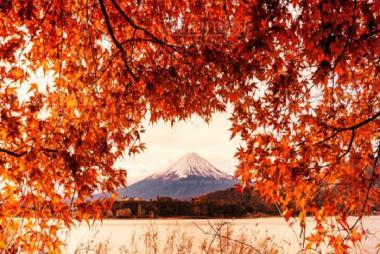 Đà Nẵng - Núi Phú Sĩ - Thủ Đô Tokyo 5N Bay Vietjet Air