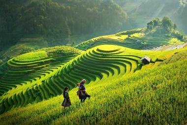 HCM - Hà Nội - Hạ Long - Sapa 6N5Đ