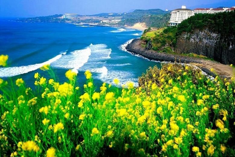 Đà Nẵng - Đảo Jeju 3N3Đ Bay Easter Jet