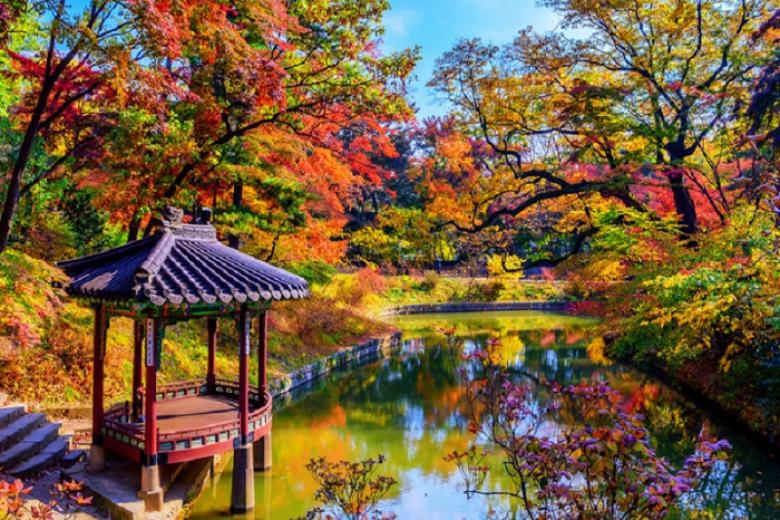 Hà Nội - Seoul - Nami - Everland 5 Ngày Bay VietJet Air - SIÊU TIẾT KIỆM