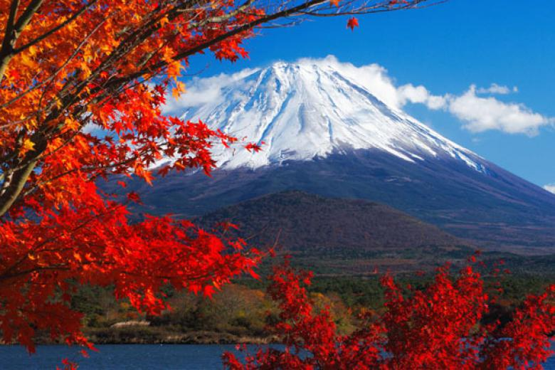 HCM - Tokyo - Owakudani - Yamanashi - Fuji 5N4Đ Bay All Nippon Airways